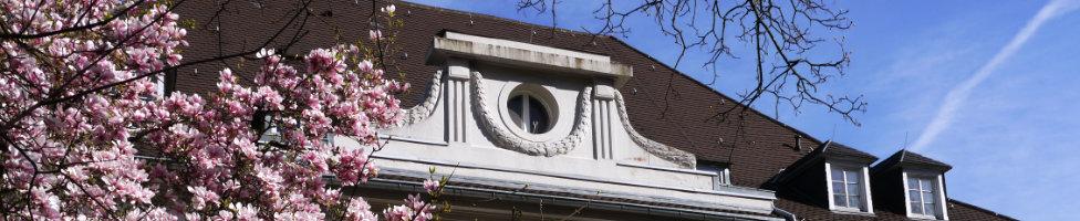 Schmitthennerhaus mit Magnolie; Quelle: Karin Wilke